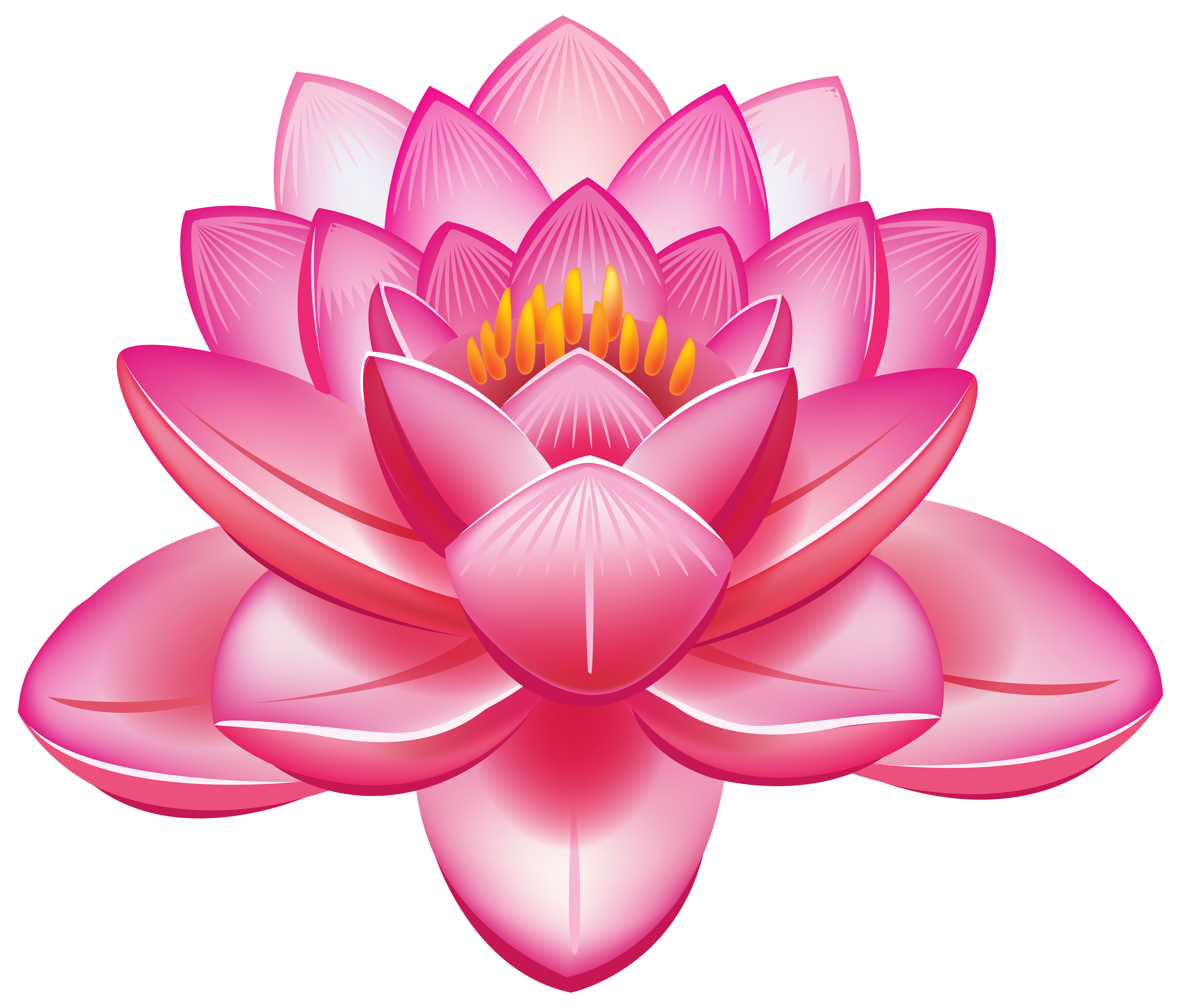 Water lily flower clipart banner freeuse CLIPART FLOWERS | Lotus Flower PNG Clipart - Best WEB Clipart ... banner freeuse
