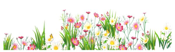 Flower clipart png graphic royalty free download Flowers and Grass PNG Picture Clipart | Bordas | Pinterest ... graphic royalty free download