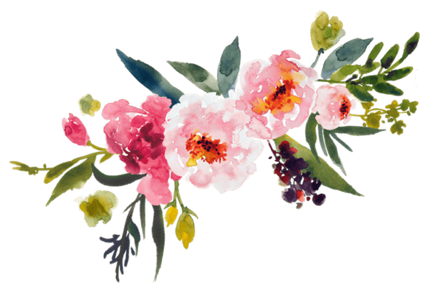 Flower clipart transparent. Various flowers png images