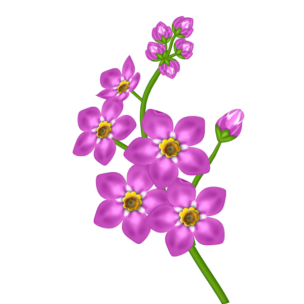Pink png flowers pinterest. Flower clipart transparent