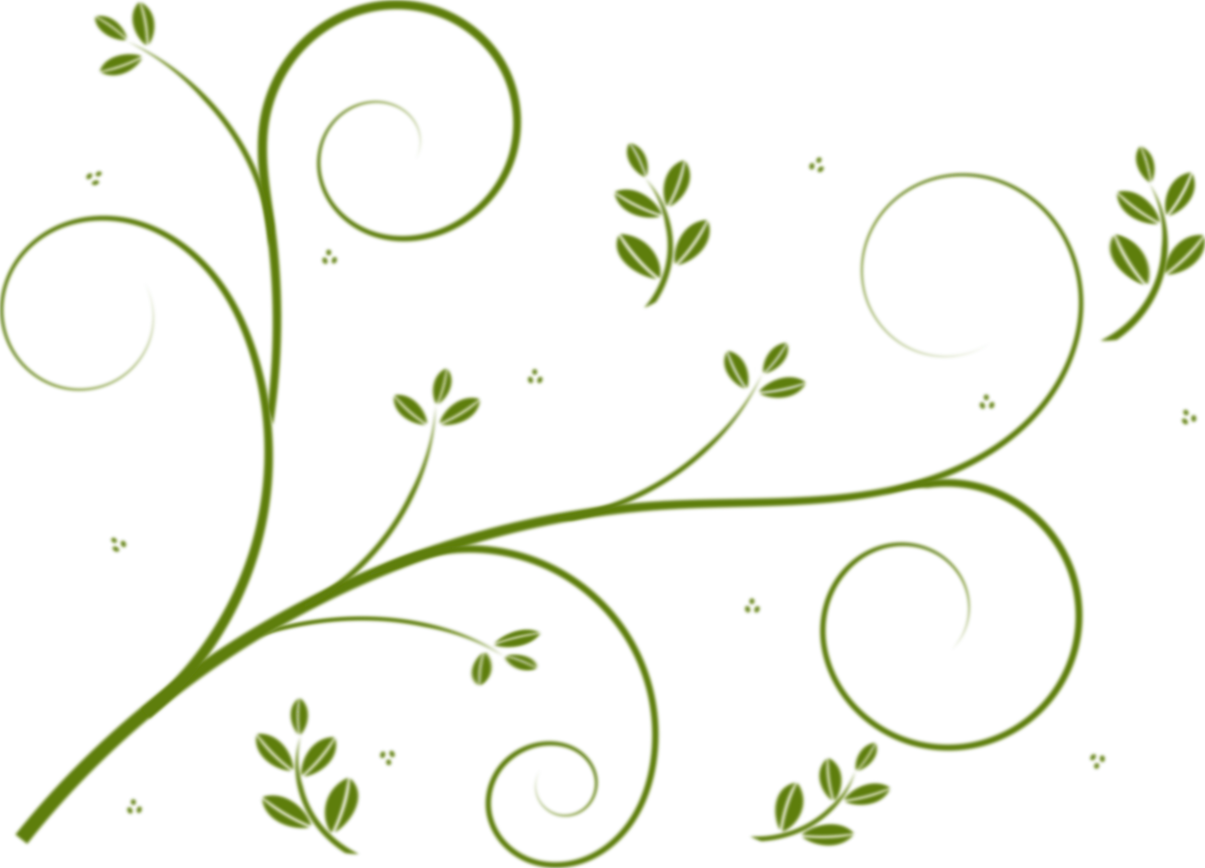 Flower vine clipart banner royalty free download Borders and Frames Vine Flower Drawing Clip art - green floral 2400 ... banner royalty free download