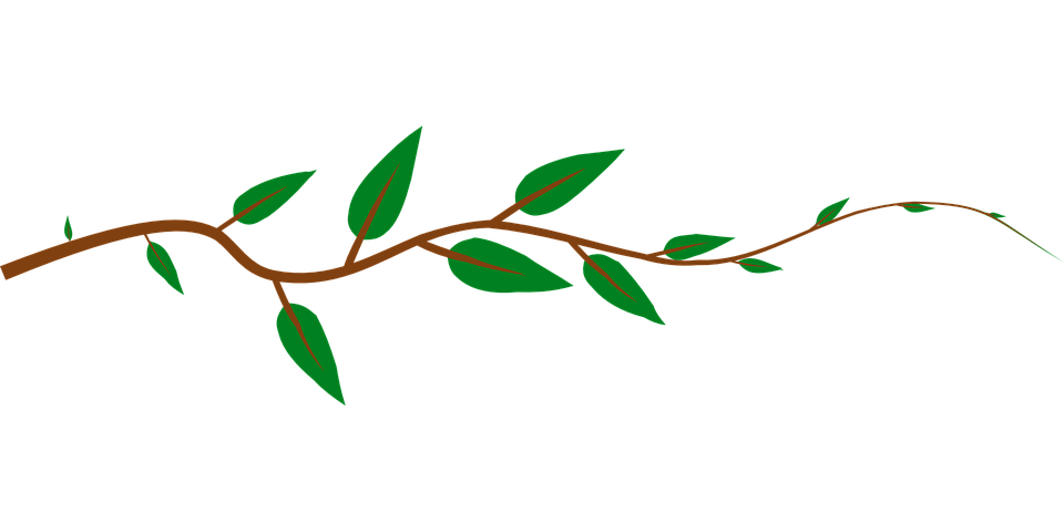 Vine flower clipart vector library Free Horizontal Vine Clipart (67+) vector library