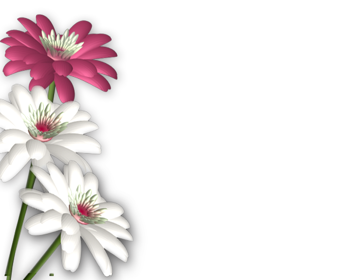 Flower clipart wallpaper clipart royalty free flowers png | photoshop.png frames wallpapers designs: Flowers png ... clipart royalty free