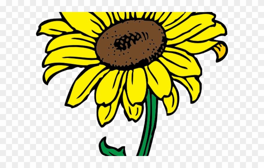 Flower color clipart transparent Flowers Color Clipart Sunflower - Png Download (#2921875) - PinClipart transparent