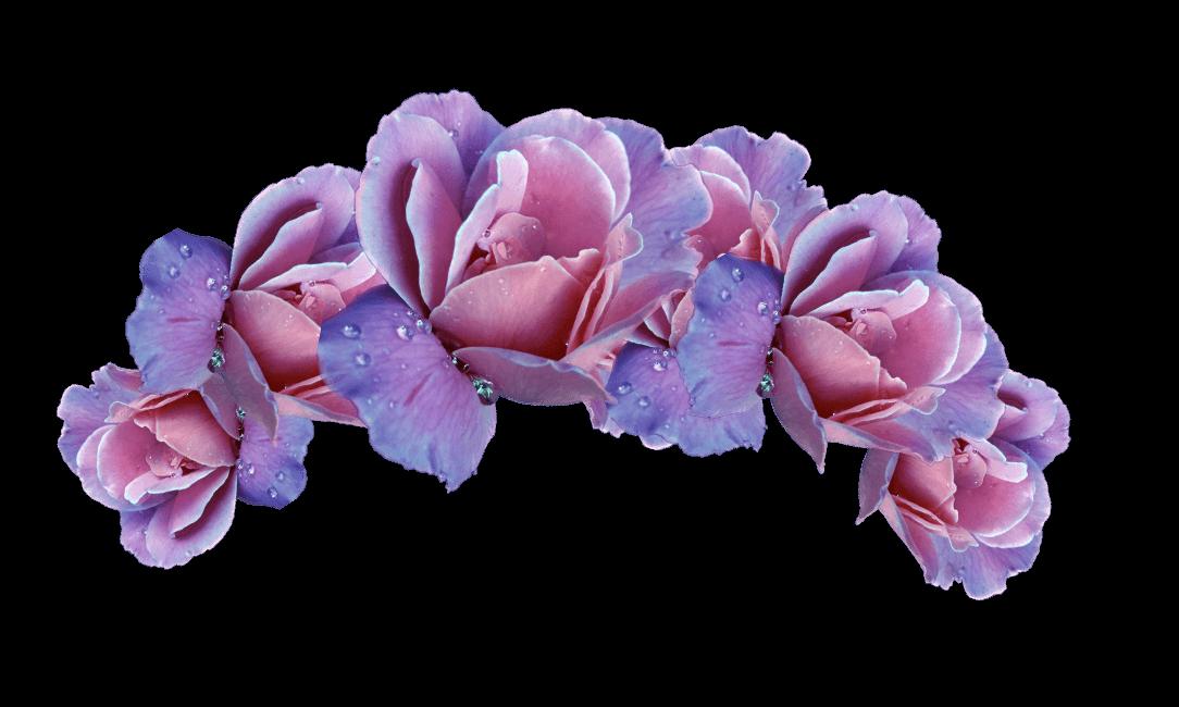 Flower crown clipart headband transparent headband flower flowers headbandflower pink purple pink... transparent
