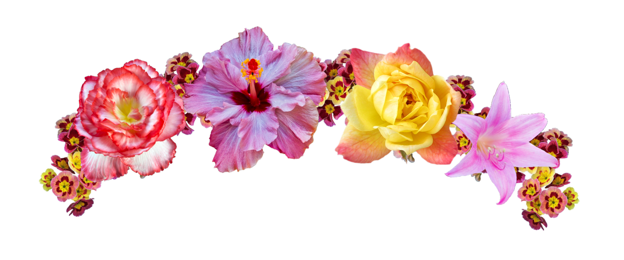 Flower crown clipart headband picture free flower flowerband flowercrown colors colorful nature... picture free