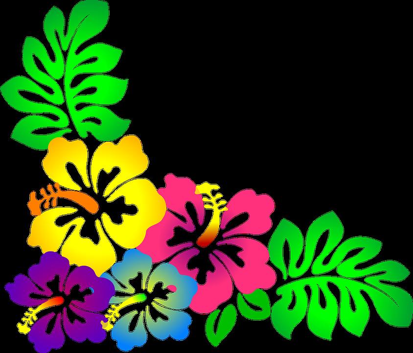Free hawaiian flower clipart banner Resultado de imagem para flores amarelo e branco png free | moana ... banner
