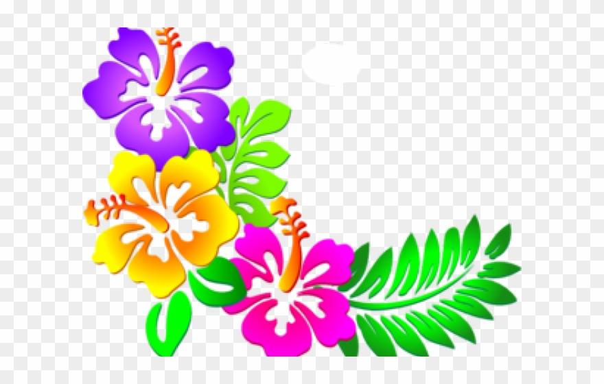 Hibiscus corner border designs. Flower design clipart images