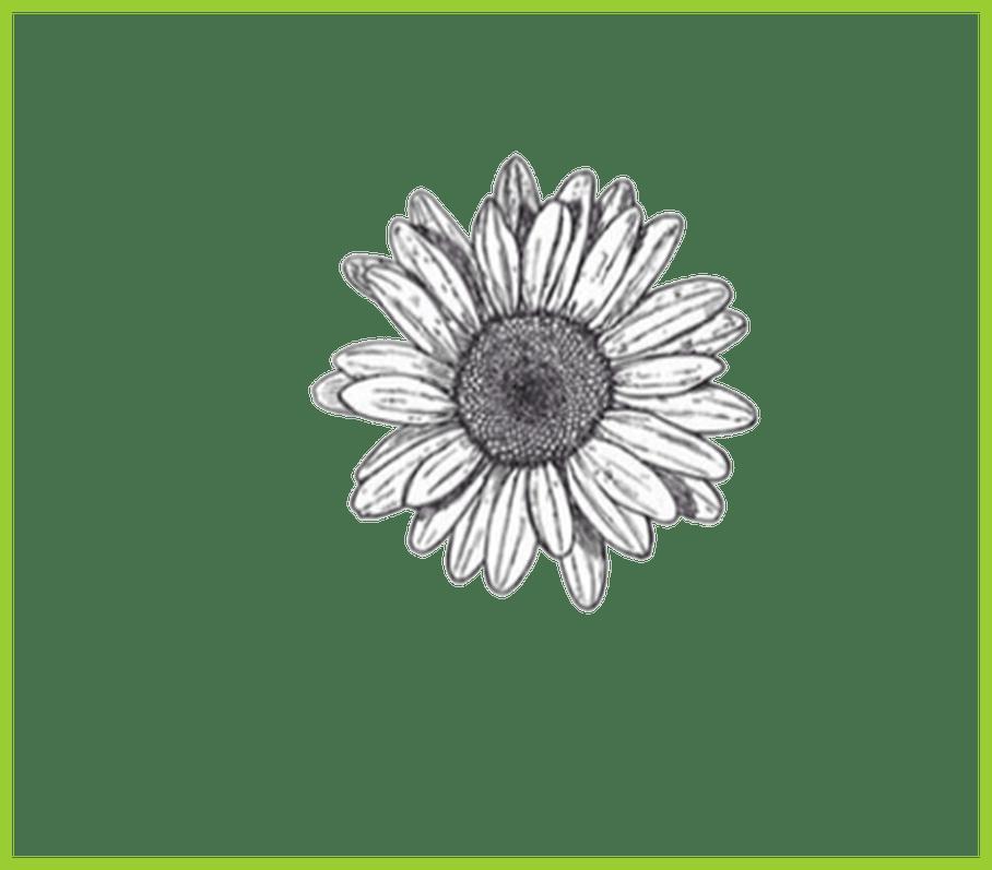 Flower doodle clipart clipart royalty free stock Marvelous Resultado De Imagem Para Flower Doodle Transparent ... clipart royalty free stock