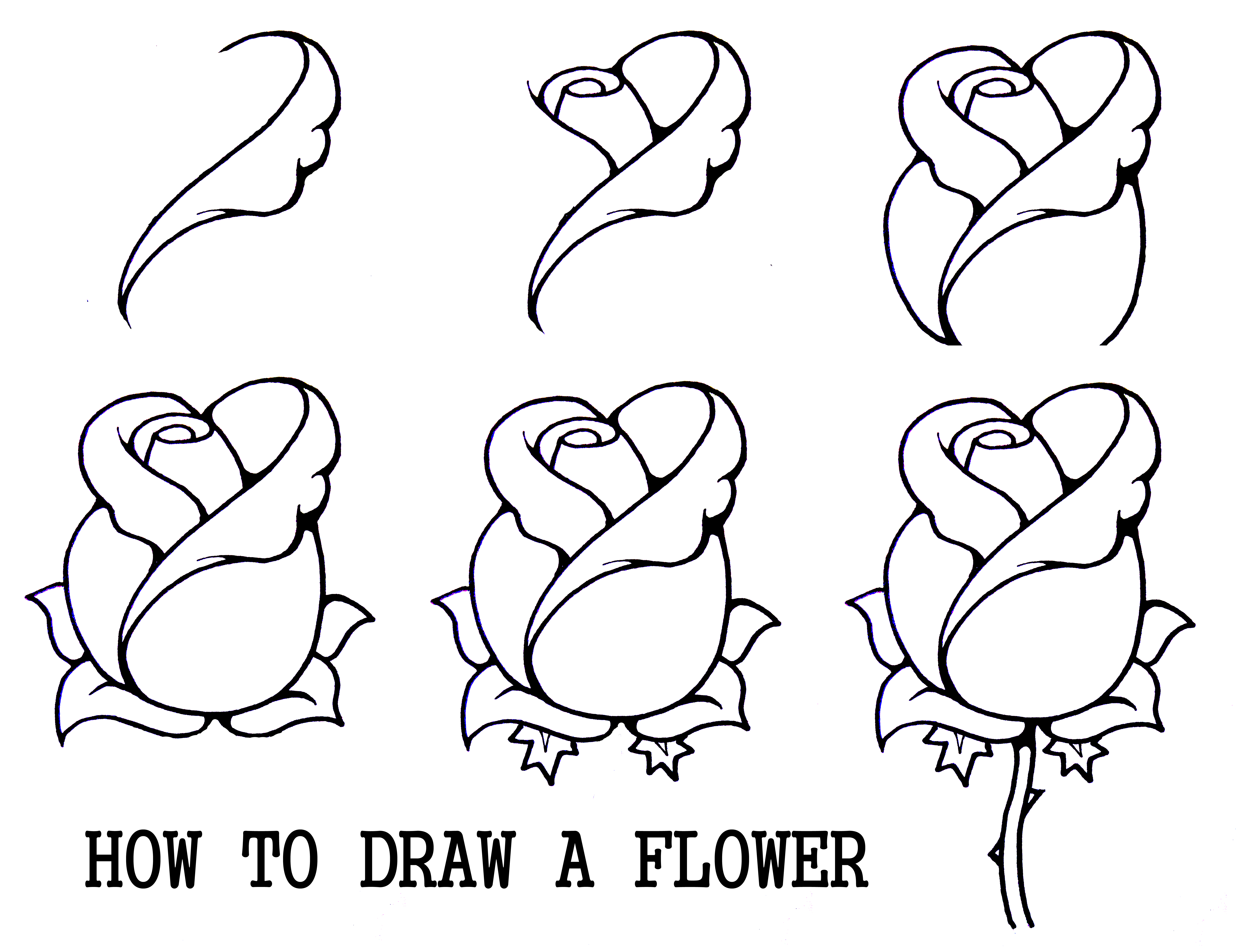 Flower drawings free download clip art Line drawings of flowers free download - ClipartFest clip art