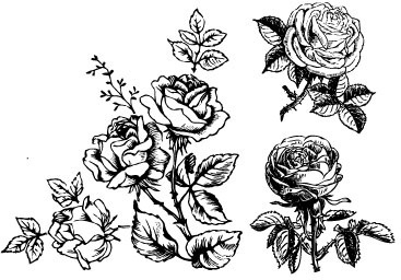 Flower drawings free download banner transparent stock Hand drawing flowers free vector download (98,821 Free vector) for ... banner transparent stock