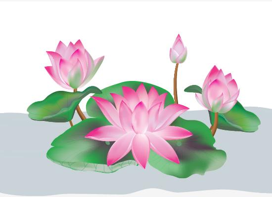 Flower drawings free download jpg free library Lotus Drawing   Free Download Clip Art   Free Clip Art   on ... jpg free library