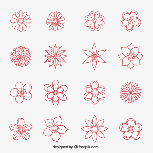 Flower drawings free download vector Hand drawn flowers collection Vector   Free Download vector