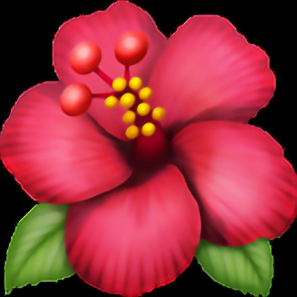 Flor png pngtumblr pngs. Flower emoji clipart