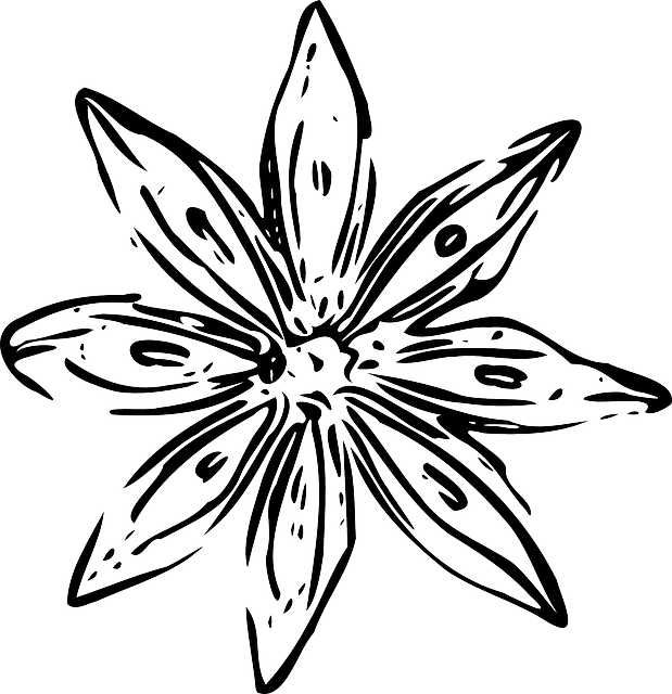 Flower garden clipart black and white image royalty free download BLACK, SIMPLE, OUTLINE, DRAWING, DESIGN, FLOWER, WHITE - Public ... image royalty free download