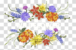 Box transparent background png. Flower heading clipart
