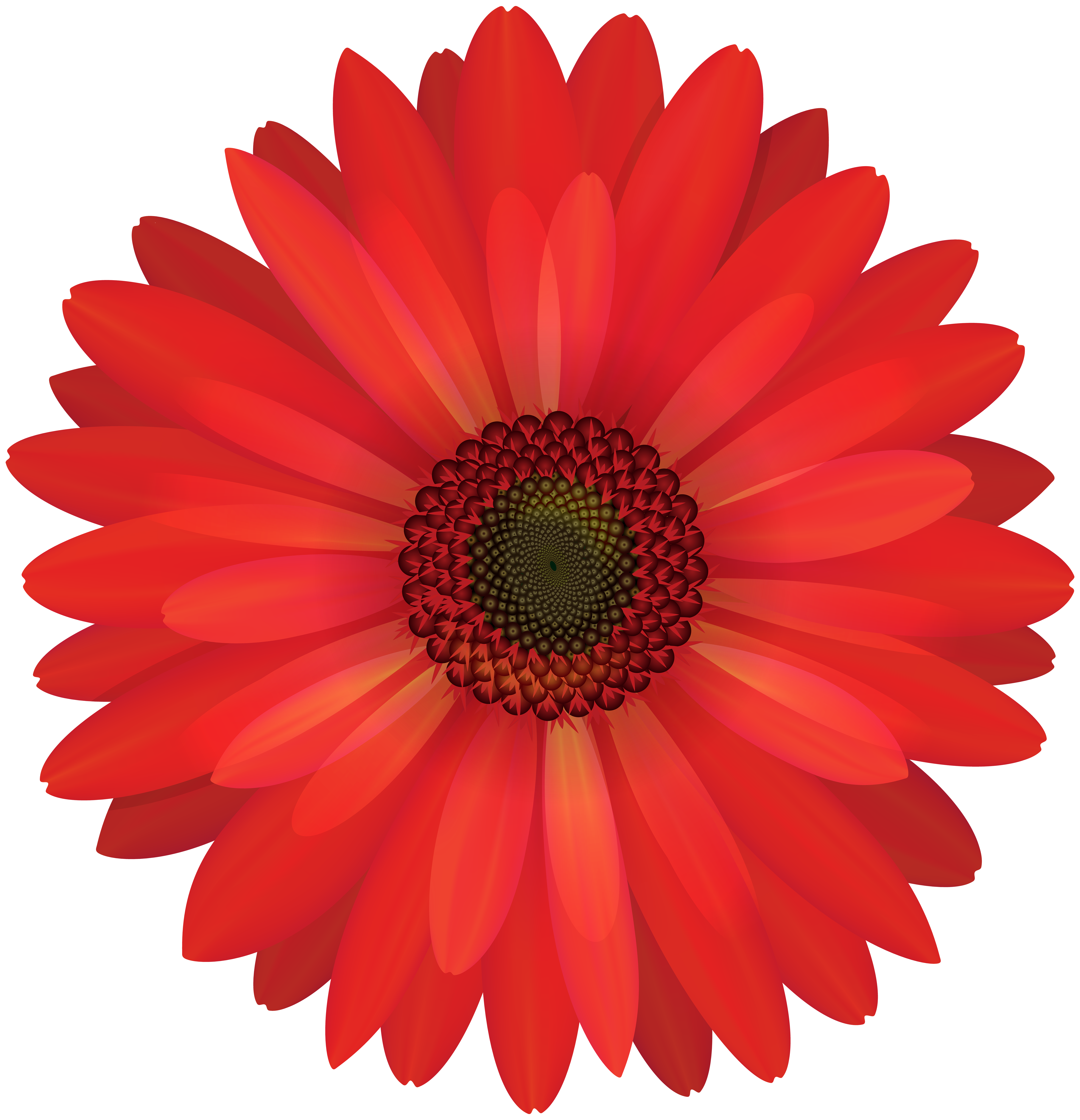 Flower image download banner royalty free stock Free photo: Red flower - Plant, Petal, Spring - Free Download - Jooinn banner royalty free stock