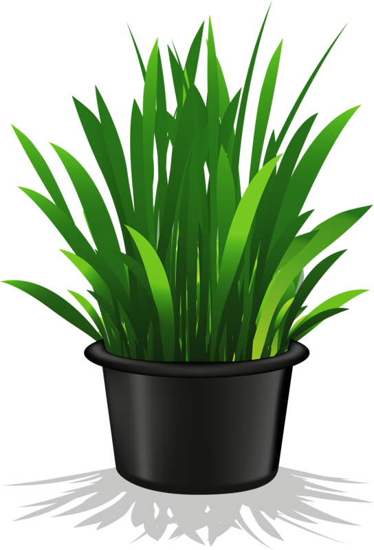 Growing flower clipart picture freeuse flower pot 11.png | Plant | Pinterest | Flower, Clip art and Decoupage picture freeuse