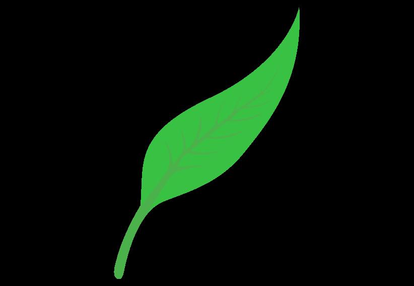 Heart shaped leaf clipart jpg freeuse stock Leaf Shapes Clipart & Leaf Shapes Clip Art Images #2105 - OnClipart jpg freeuse stock