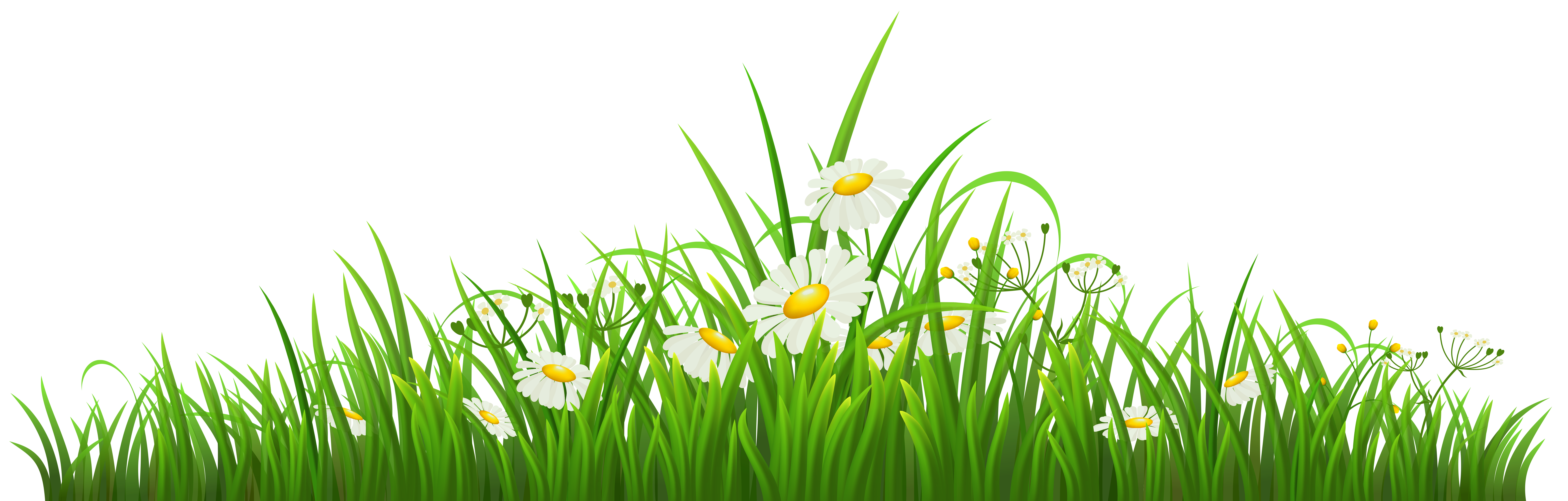 Flower meadow clipart clip art black and white download Transparent Grass with Chamomile PNG Clipart | Gallery Yopriceville ... clip art black and white download