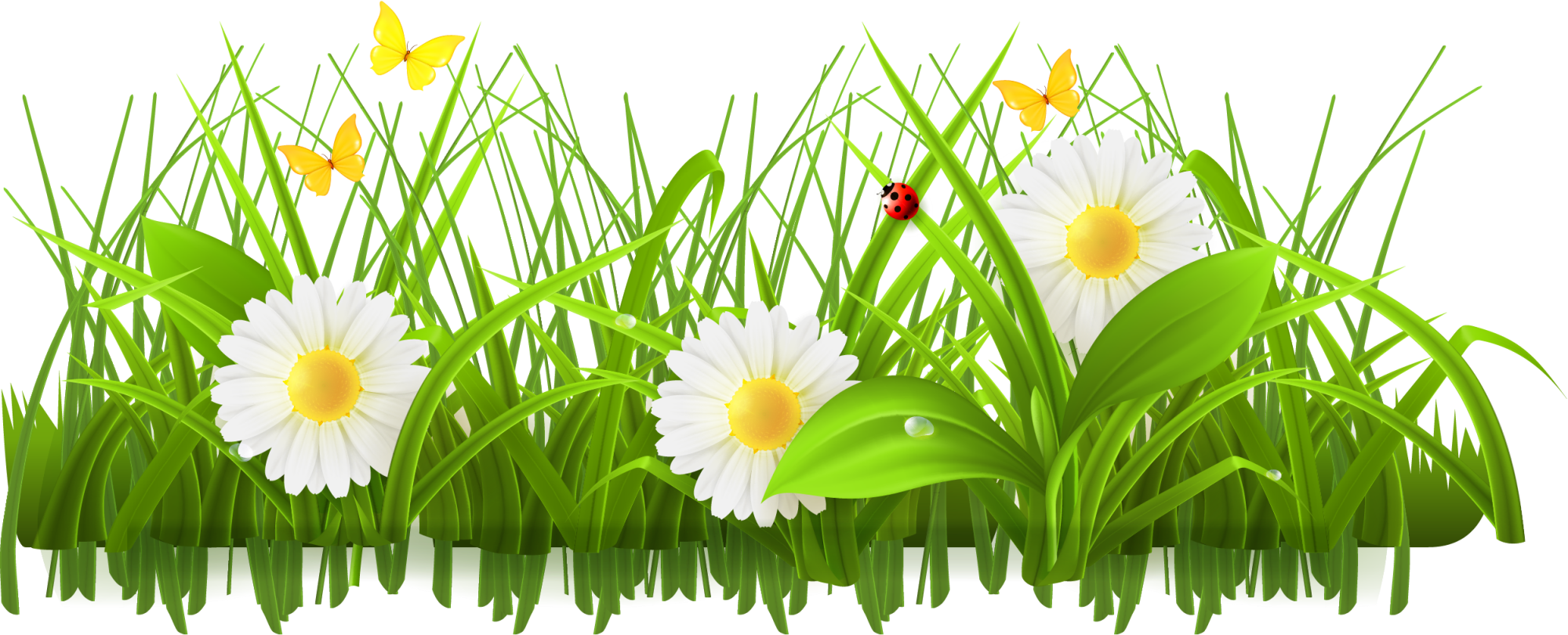 Spring stock photography clip. Flower meadow clipart