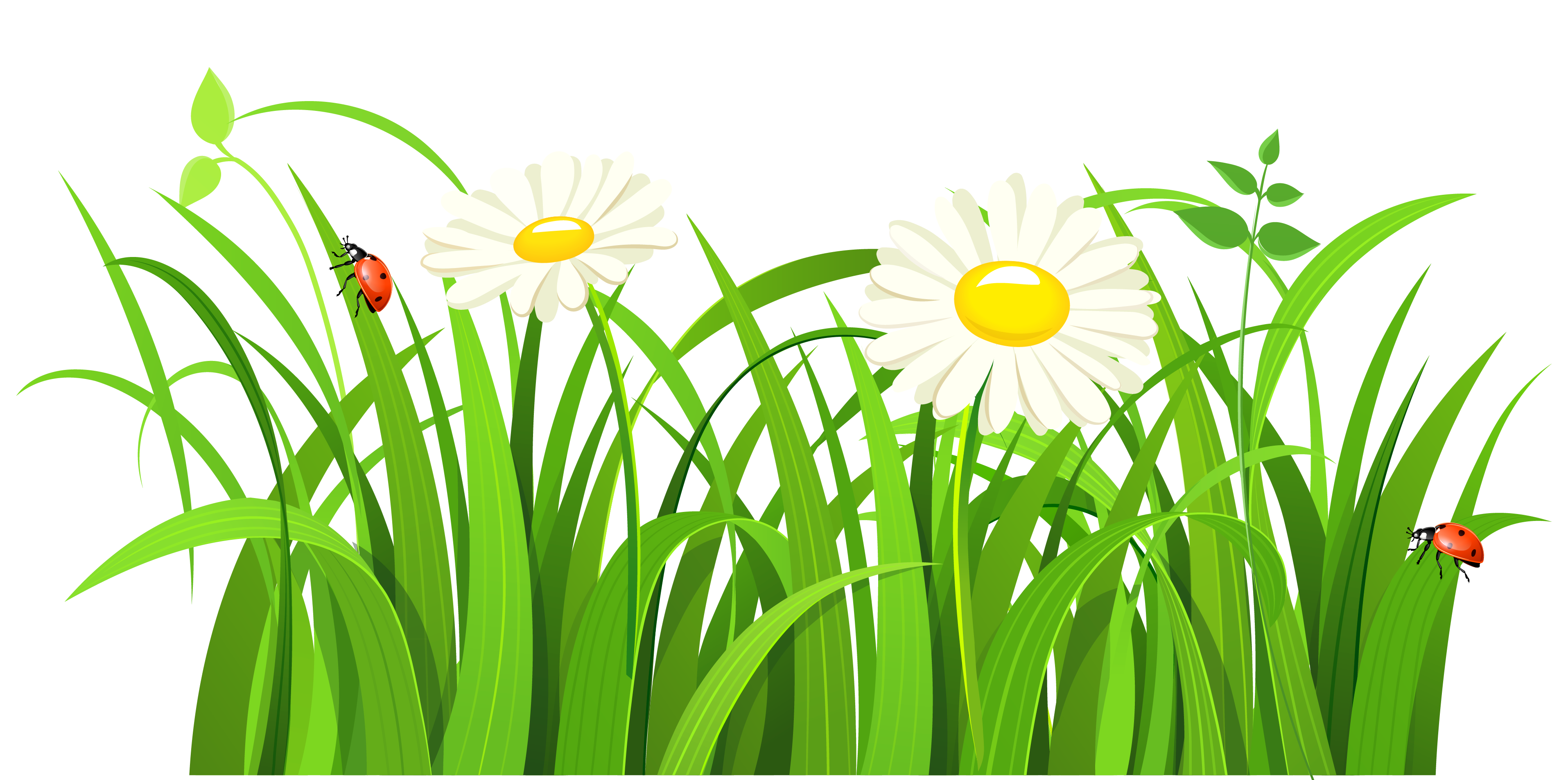 Flower meadow clipart jpg freeuse stock Grass clip art free free clipart image 5 | Floral Delight ... jpg freeuse stock