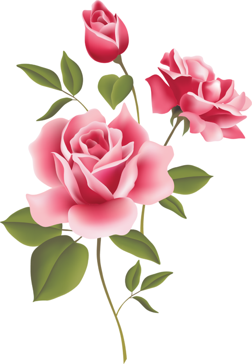 Flower parts clipart clip free stock Web Design & Development | Pinterest | Pink roses, Clip art and ... clip free stock