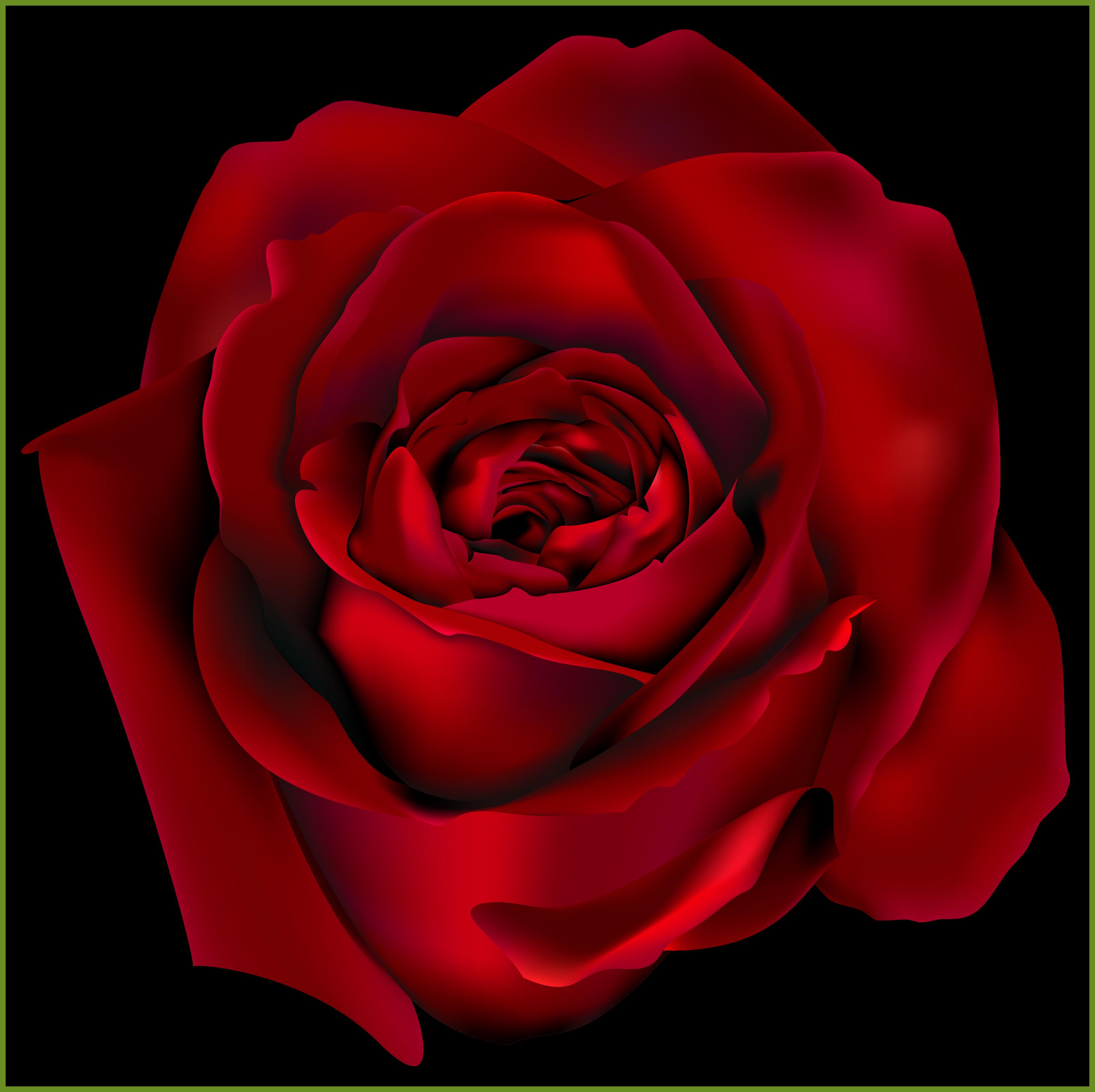 Unbelievable transparent red rose. Flower petals falling clipart