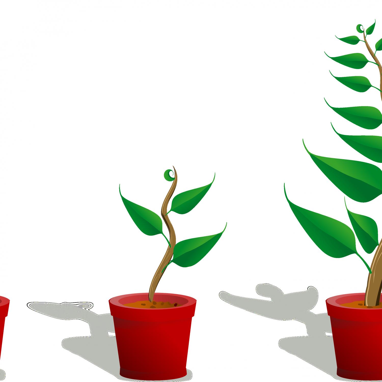 Flower plant clipart jpg stock Flower Plant Clipart Plant 2 Growing 4444pxpng, cute cartoon flowers ... jpg stock