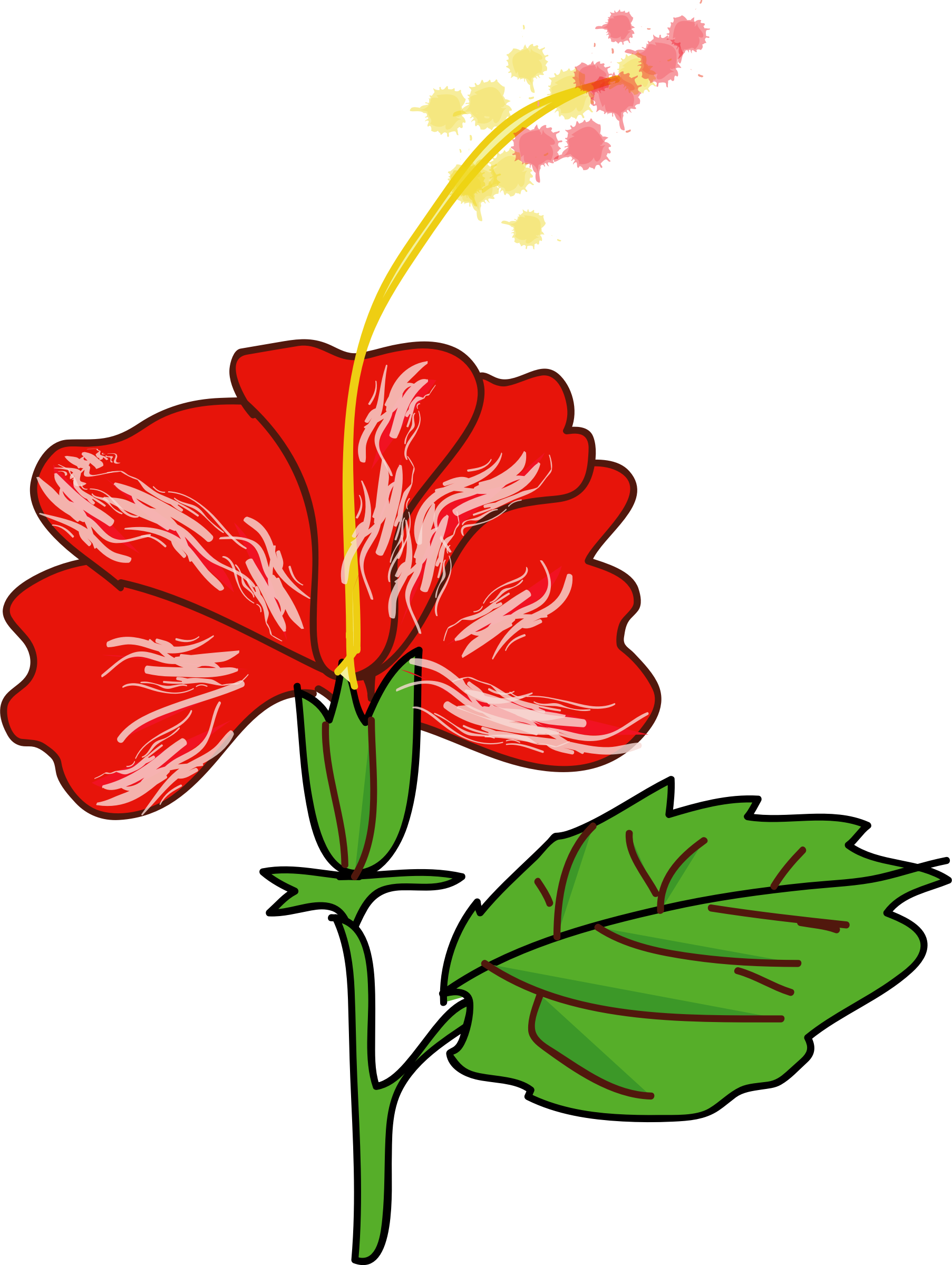 Flower plant clipart png transparent Red Flower Clipart hybiscus - Free Clipart on Dumielauxepices.net png transparent