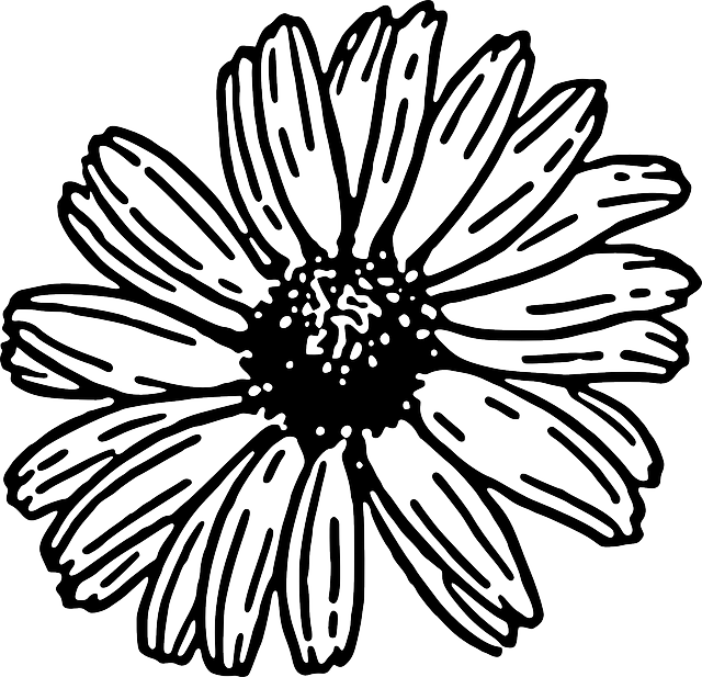 Flower plant clipart black and white banner free stock Daisy Clipart black and white - Free Clipart on Dumielauxepices.net banner free stock
