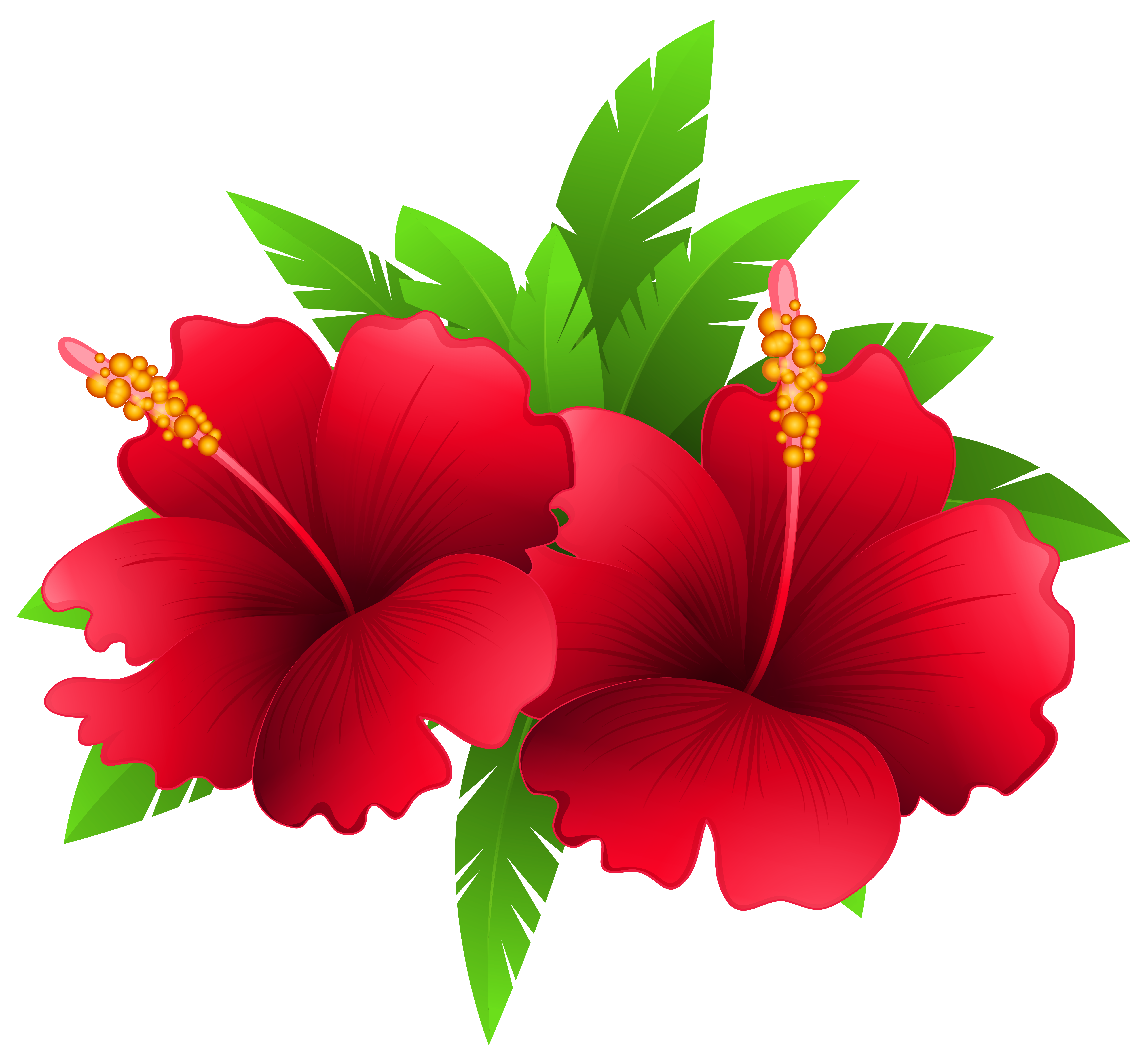 Flower plant clipart freeuse library Exotic Flowers and Plant PNG Clipart Image | Gallery Yopriceville ... freeuse library