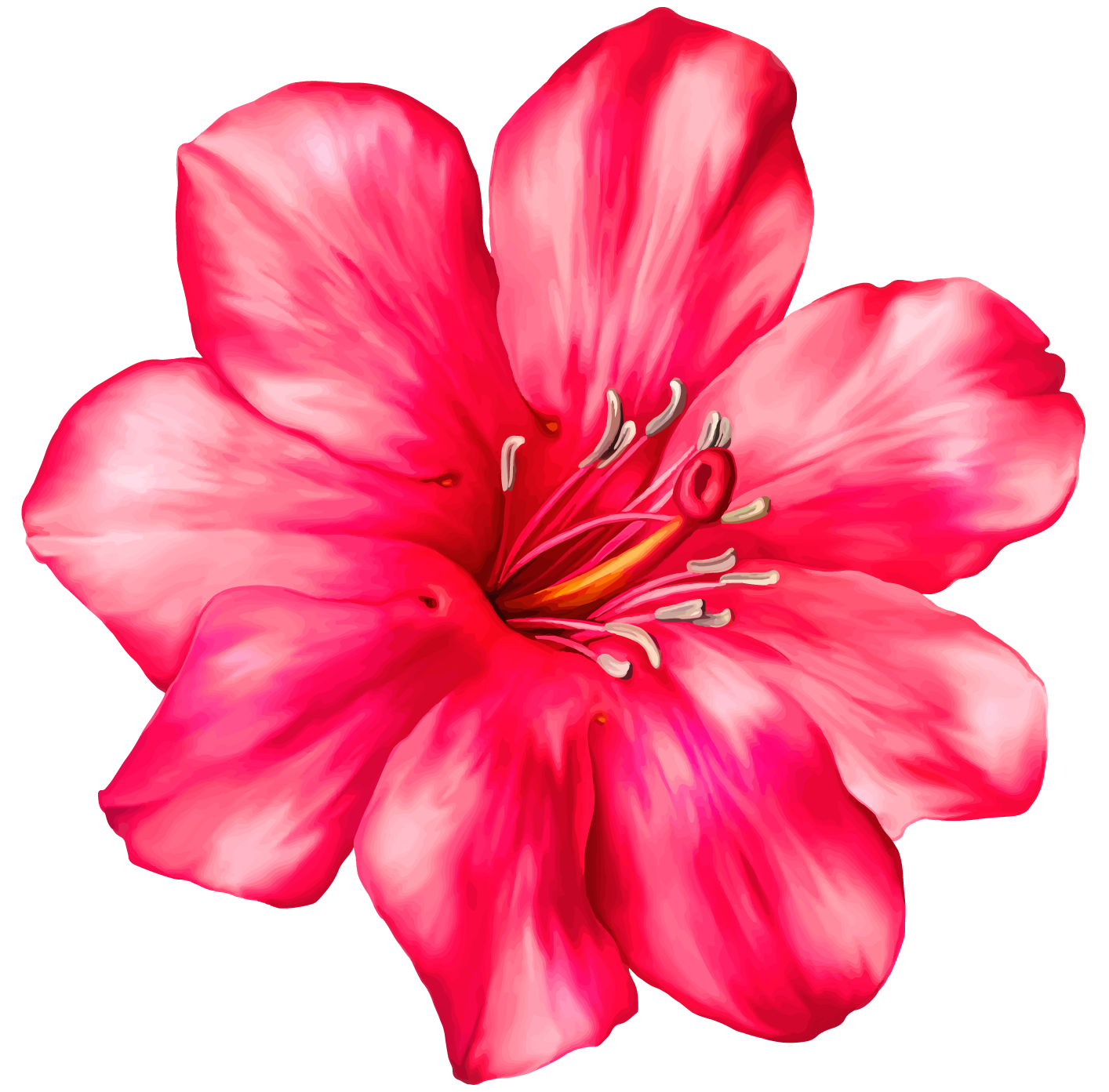 Flower clipart .png png royalty free stock Exotic Pink Flower PNG Clipart Picture png royalty free stock