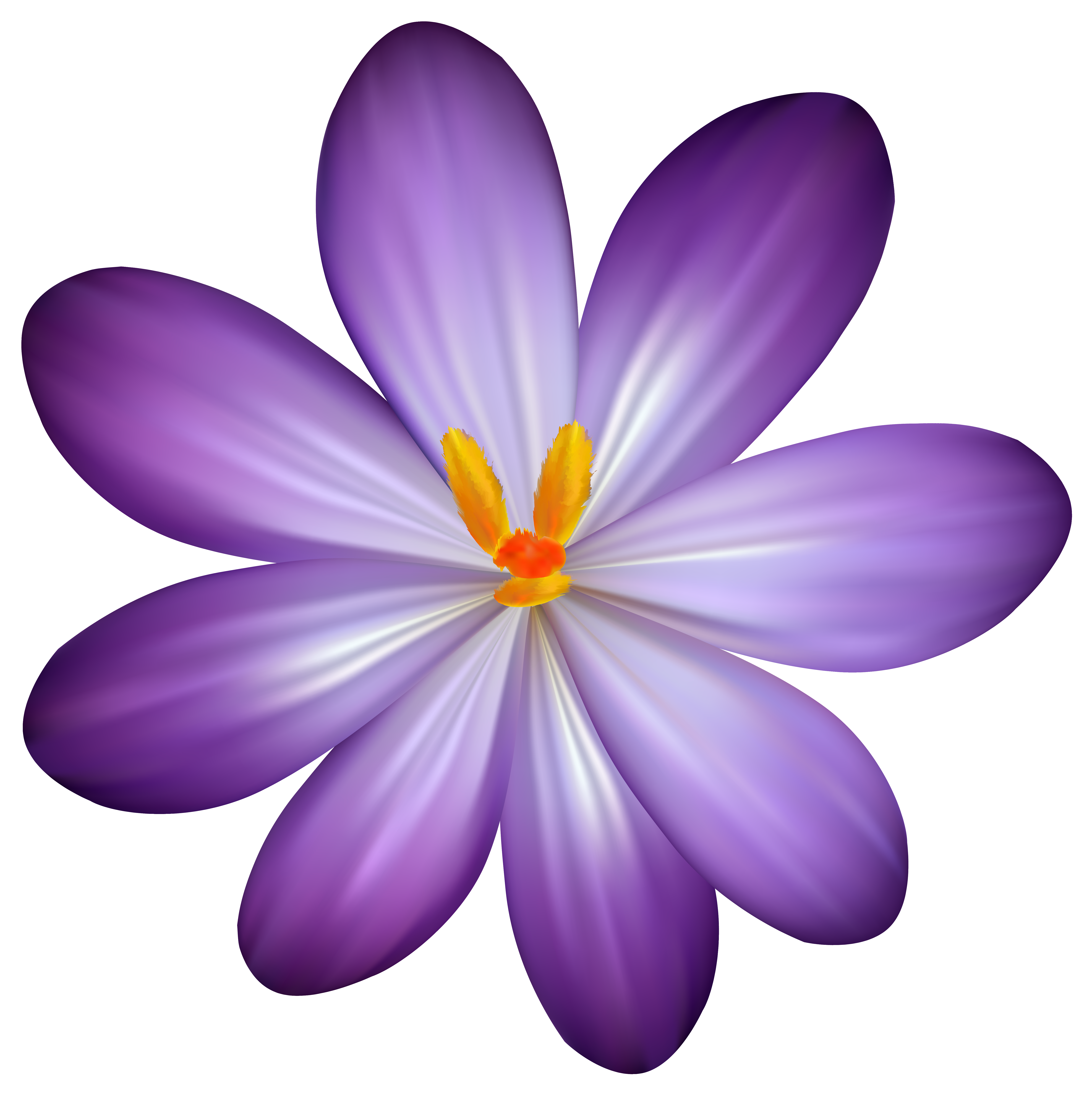 Flower clipart purple svg royalty free stock Purple Crocus Flower PNG Clipart Image svg royalty free stock