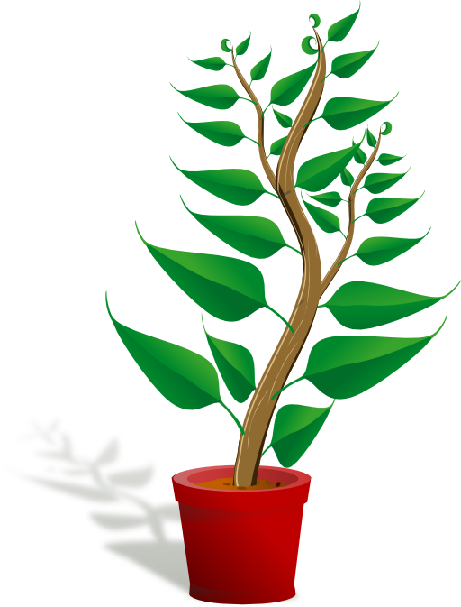 Flower pot clipart free clip art royalty free stock Green Tall Plant In Its Pot Clipart | i2Clipart - Royalty Free ... clip art royalty free stock