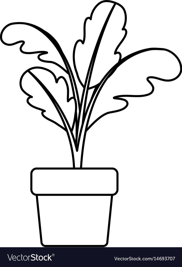 Flower pot with stems clipart black and white graphic free stock Black silhouette of beet plant in flower pot graphic free stock