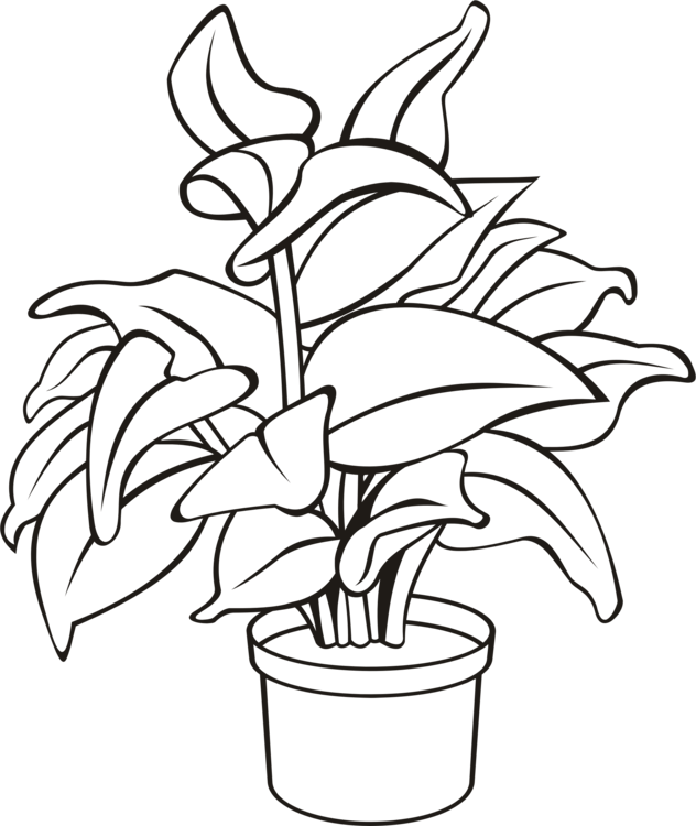 Flower pot with stems clipart black and white clip freeuse library Line Art,Plant,Flora Vector Clipart - Free to modify, share, and use ... clip freeuse library
