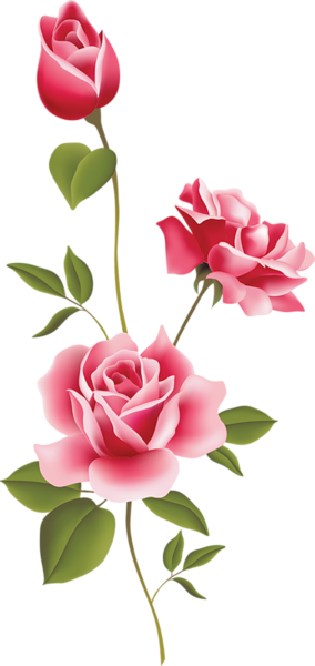 Clipart rosa graphic library library Pin by mary lou hynes on drawing | Rose art, Flowers, Flower pictures graphic library library