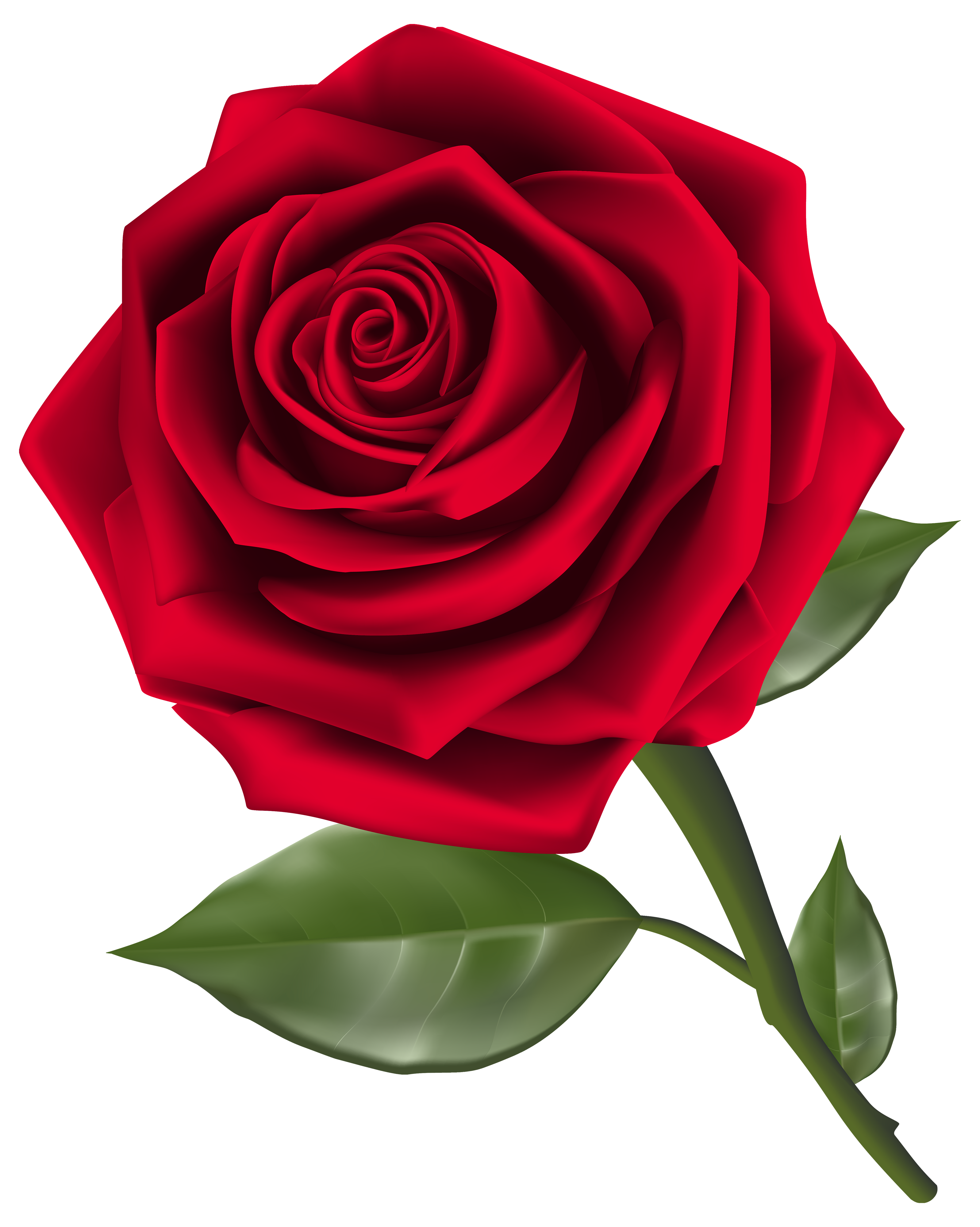 Red rose clipart image vector library library Beautiful Red Rose PNG Clipart - Best WEB Clipart vector library library