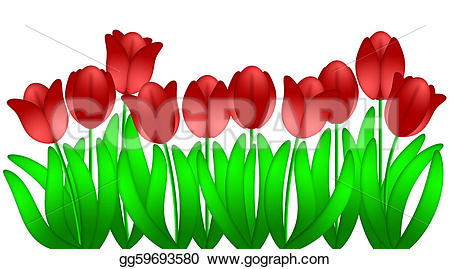 Flower row clipart picture royalty free library Stock Illustration - Row of red tulips flowers isolated on white ... picture royalty free library