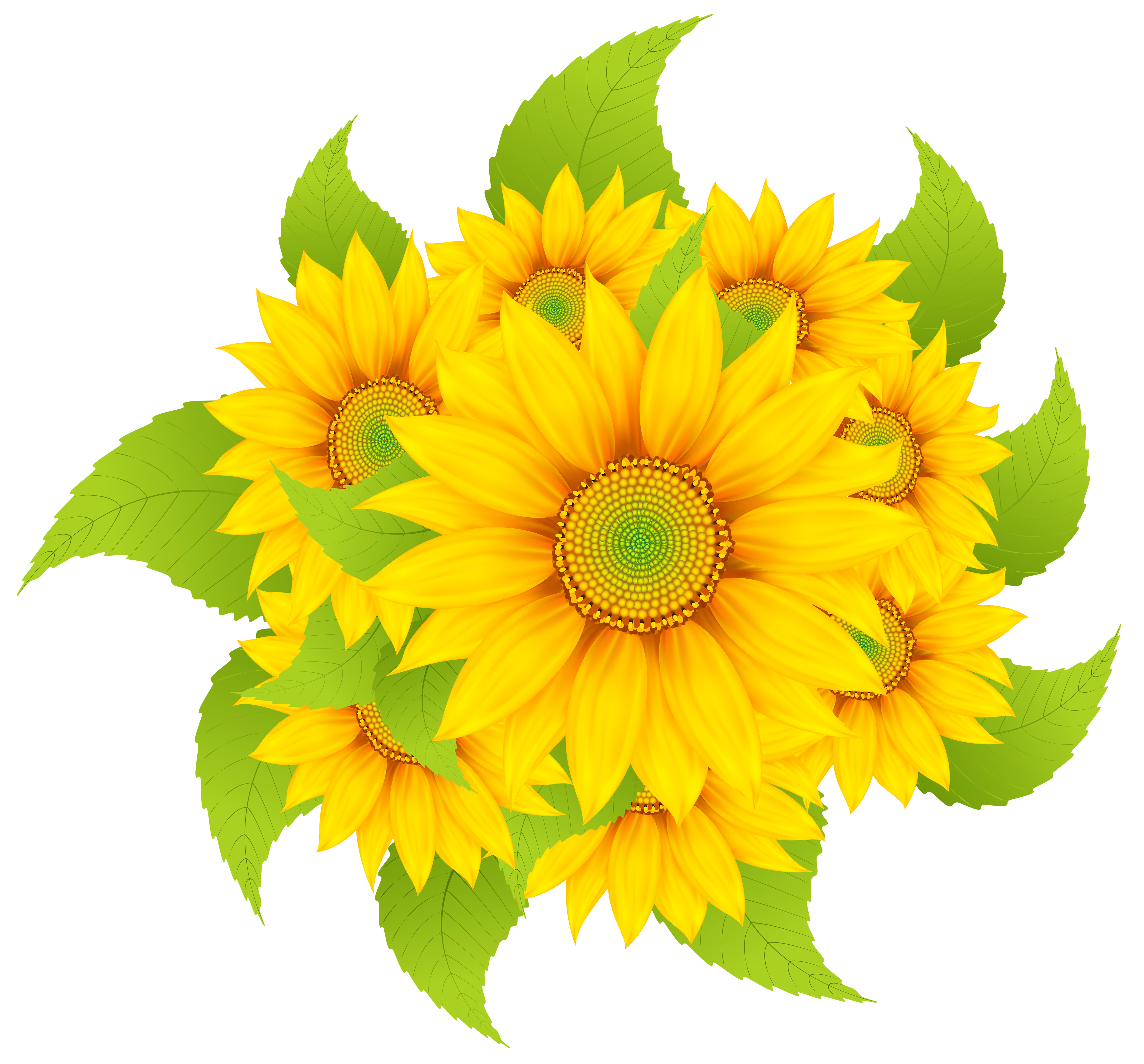 Flower seed clipart clipart free stock Sunflowers Decoration Clipart PNG Image | Gallery Yopriceville ... clipart free stock