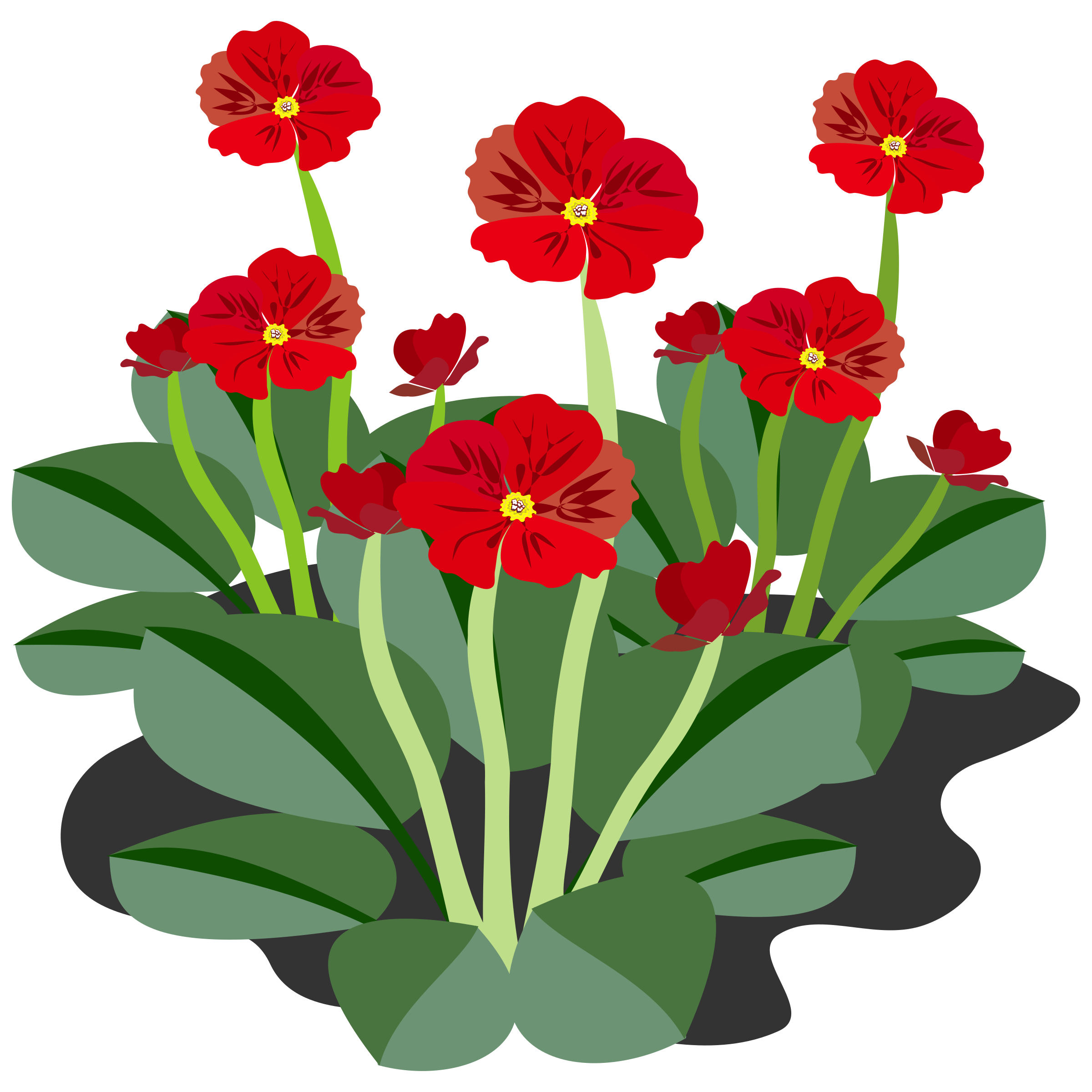 Flower seeds clipart banner free stock Clipart - Flower banner free stock