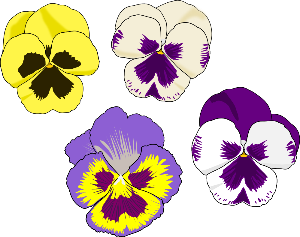 Pansy flower clipart clip royalty free library Pansy Drawing Flower Clip art - Crunch Cliparts 999*790 transprent ... clip royalty free library