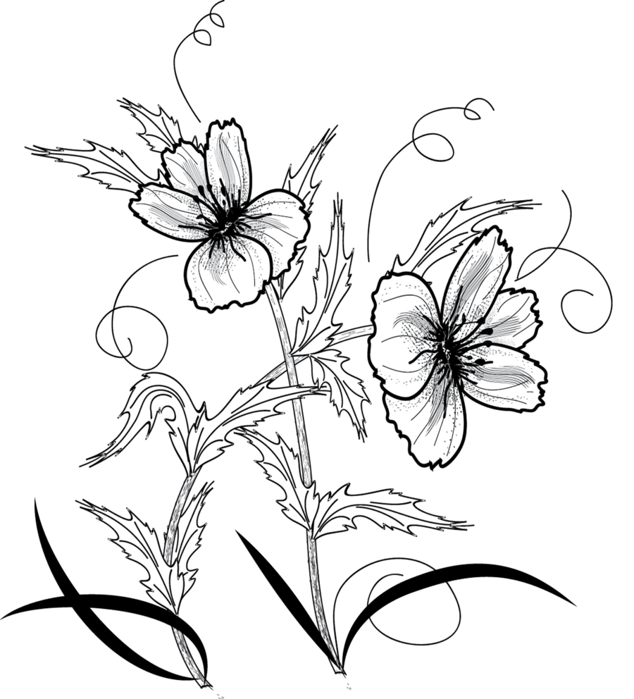 Flower shop clipart black and white banner black and white download flower png by roula33 on DeviantArt banner black and white download