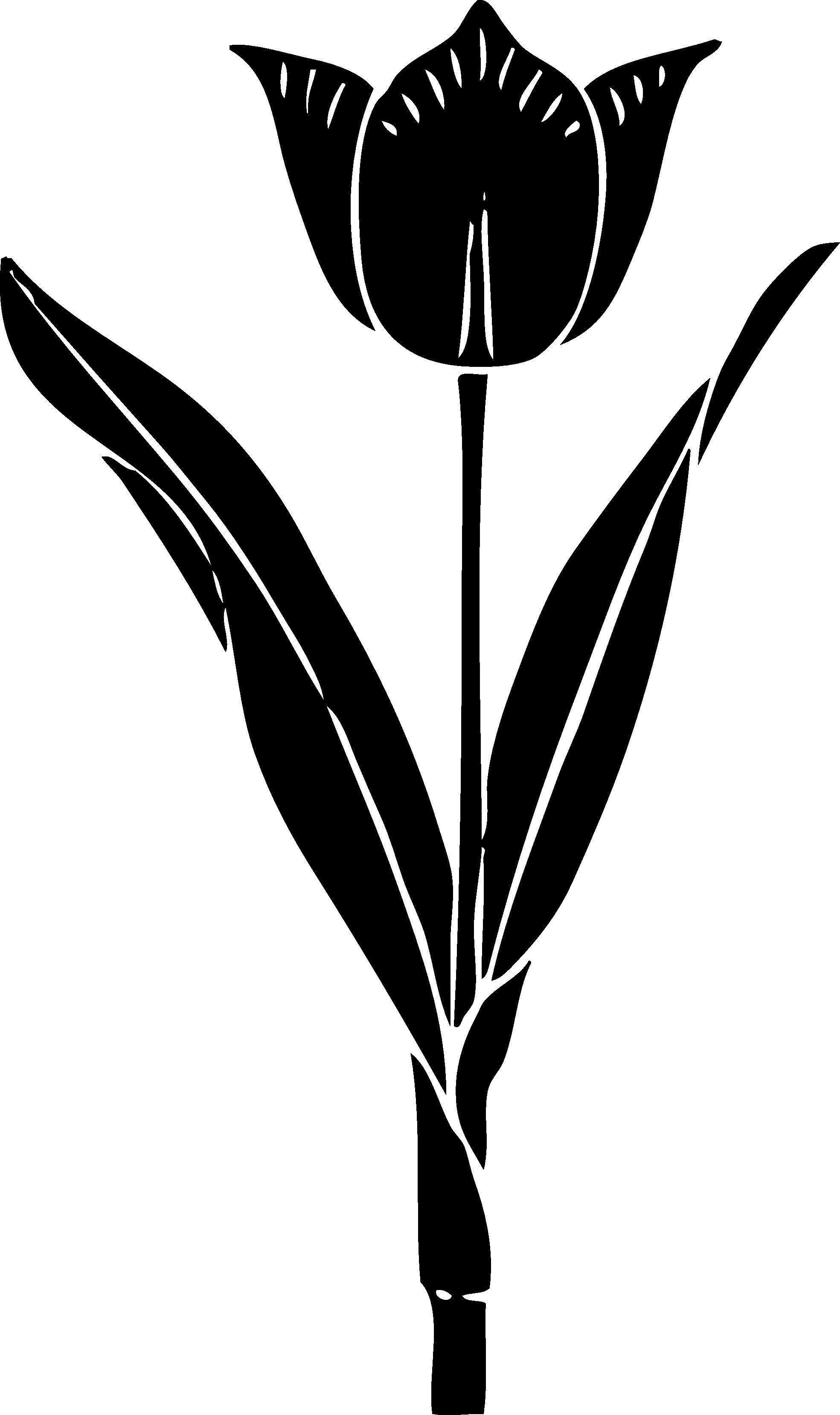 Flower stem clipart black and white vector black and white Tulip Clipart Black And White | Clipart Panda - Free Clipart Images vector black and white