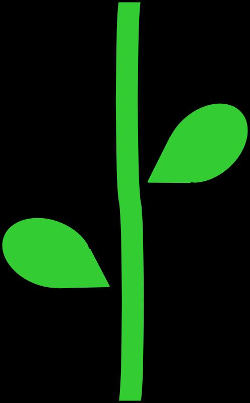 Flower stems clipart