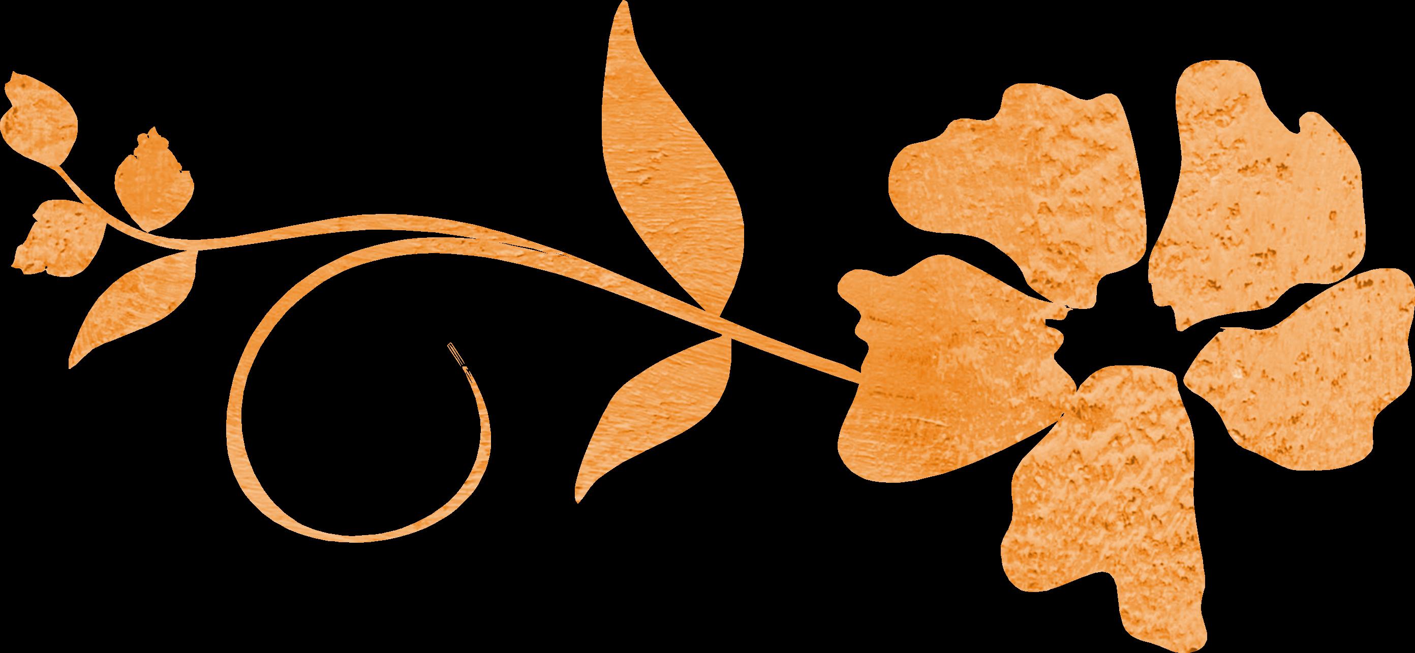 Flower swirls clipart png Flower Swirl Vector Orange free image png