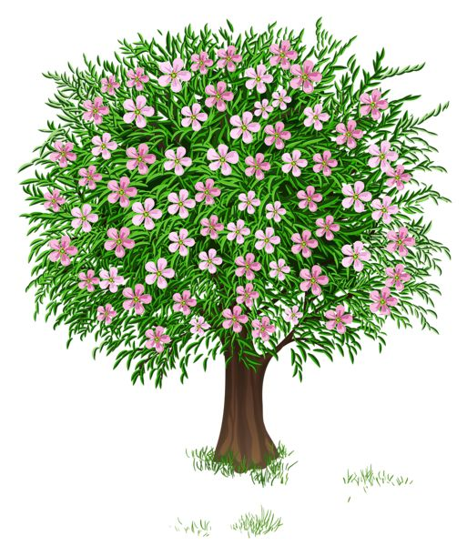Flower tree clipart png vector freeuse download Spring Tree Transparent PNG Clipart Picture | nature clipart ... vector freeuse download