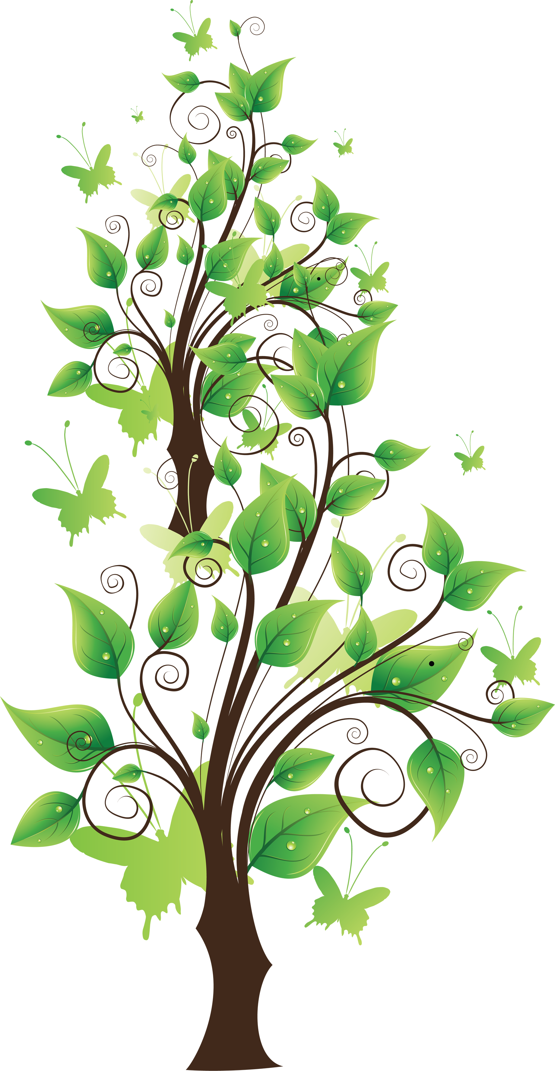 Parts of a tree clipart vector freeuse download Png tree clipart - ClipartFest vector freeuse download