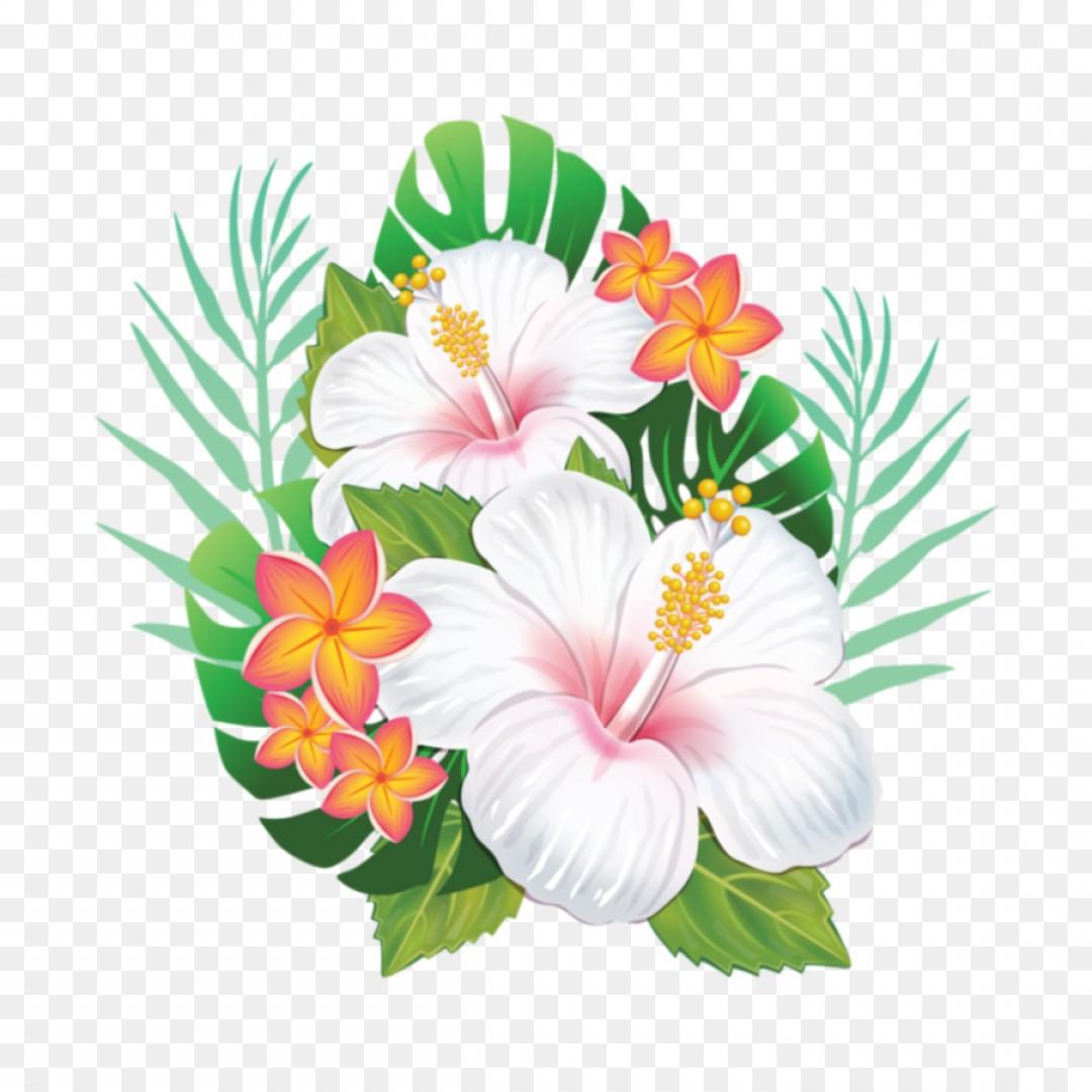 Flower vector graphics clipart. Png hawaii clip art